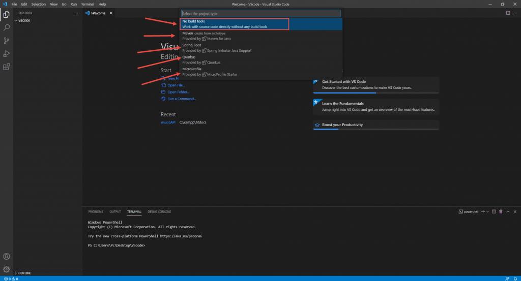 install Java in VS code 7